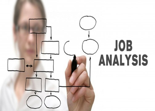 Image result for job analysis