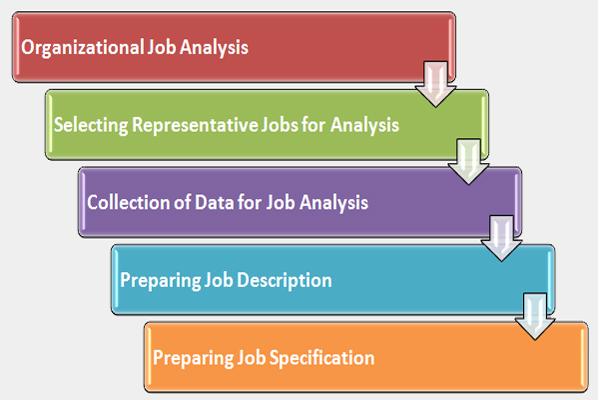 job analysis process and steps