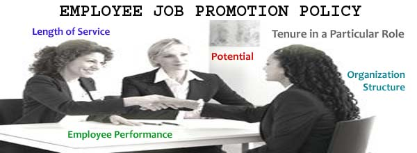 Employee Promotion Policy - HR Helpboard