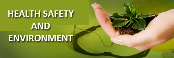 health safety and environment of company