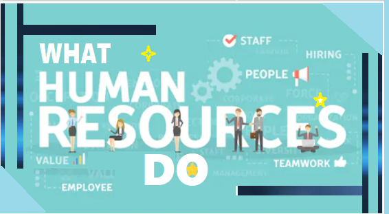 What do the Human Resource do